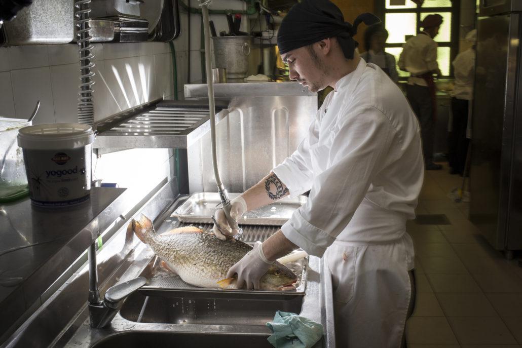 Uno sguardo alla cucina: la pulitura del pesce
