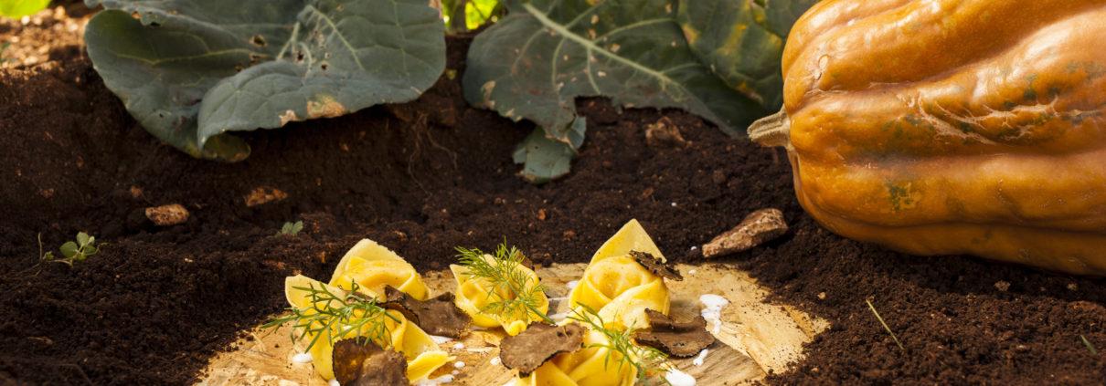 Tortelloni zucca e timo, su fonduta di canestrato e tartufo, ripresi nell'orto