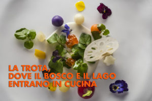 WEBSito_MG_1288Rotarian